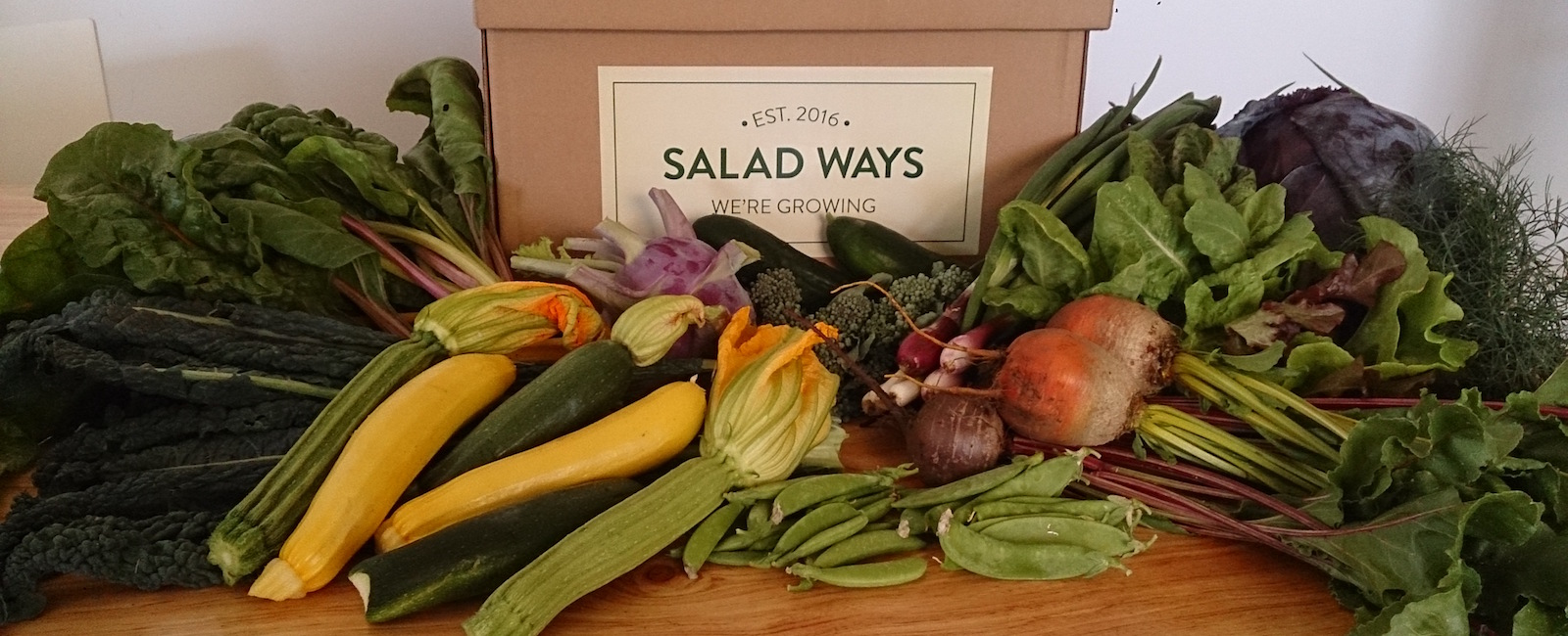 Salad Ways Veggie Box