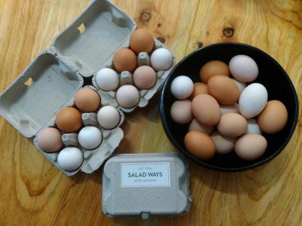Salad Ways Eggs